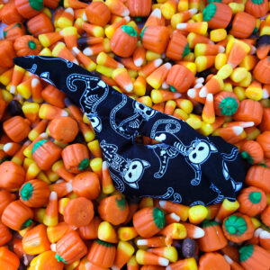 Whale Sac halloween skeleton cats clay dry hand bag disc golf discgolf